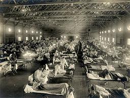 influenza hospital